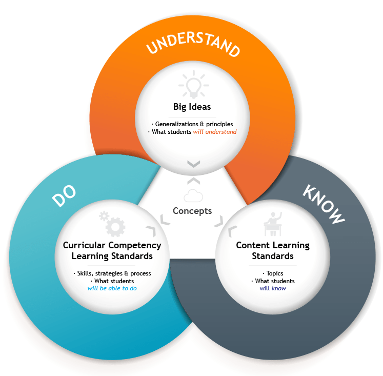 curriculum_model